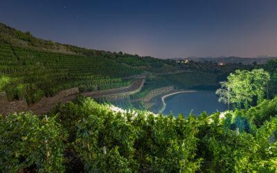 I Vini dell'Etna- La Gelsomina