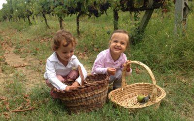 Il Vino Italiano, orgogliosi di rappresentarlo