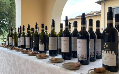 Vini Piemontesi alla Tenuta Poggio Casciano, Ruffino